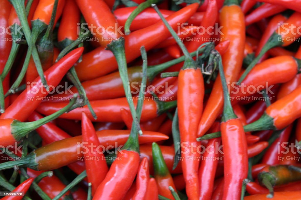 Red hot chilli peppers - Royalty-free Agriculture Stock Photo