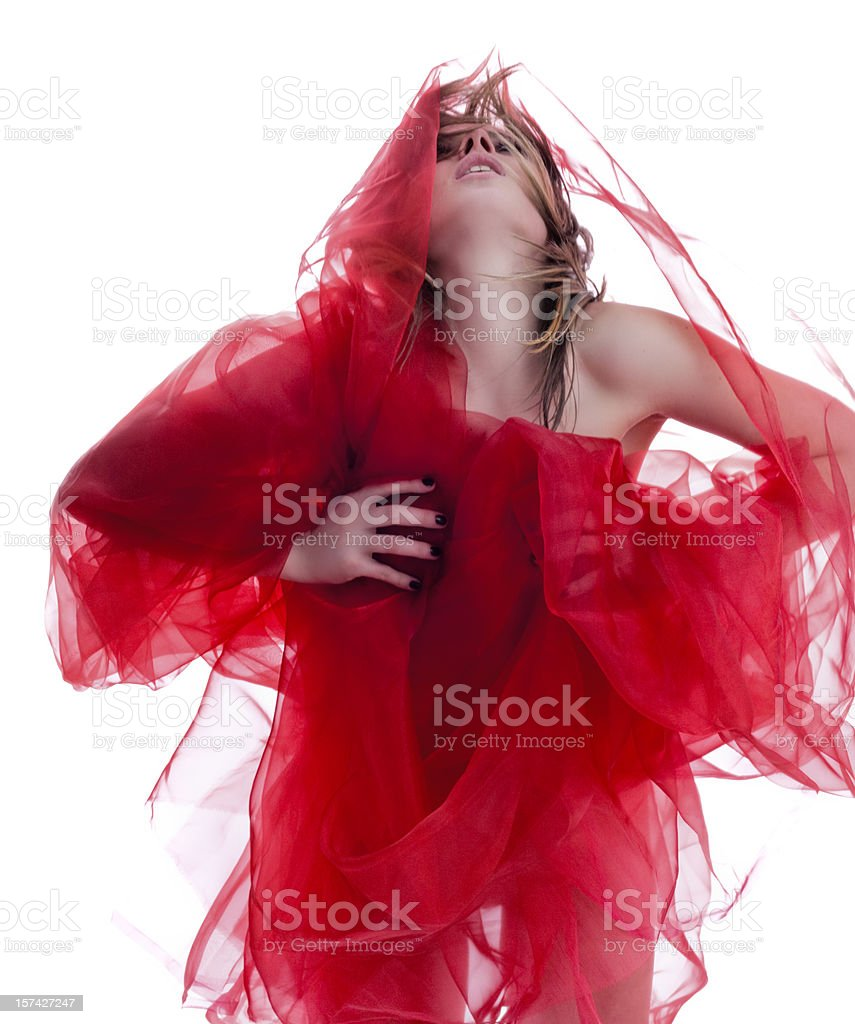 Red Hot Elegant royalty-free stock photo