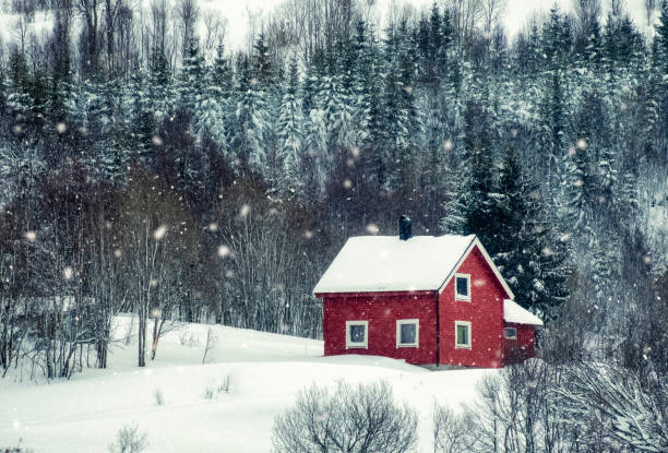 Red house with snowing in pine forest stock photo