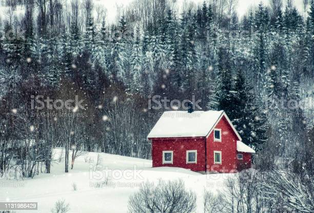 Photo of Red house with snowing in pine forest