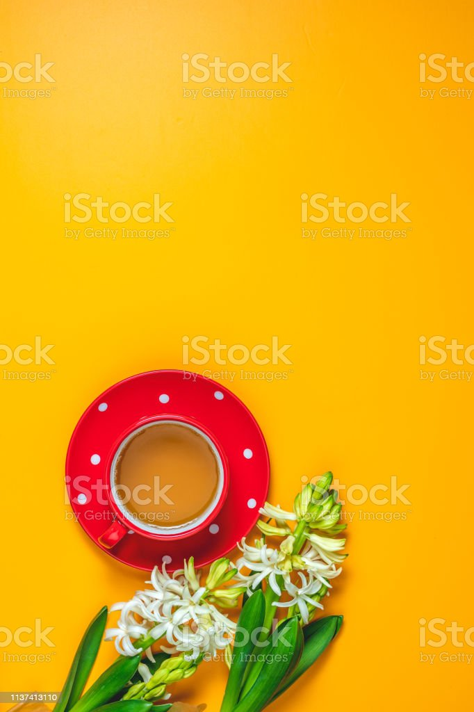 Red in white dotted cup of tea beside white hyacinths stock photo