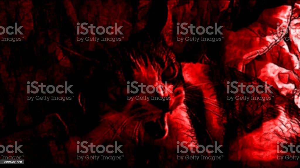 Red Inferno Demon Cat stock photo