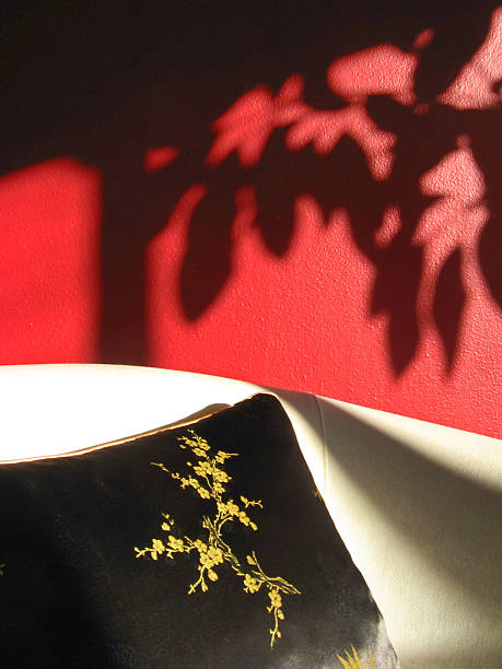 Red interior wall with plant shadow stock photo