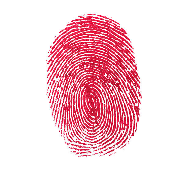 red isolated fingerprint on white background - human finger stock pictures, royalty-free photos & images
