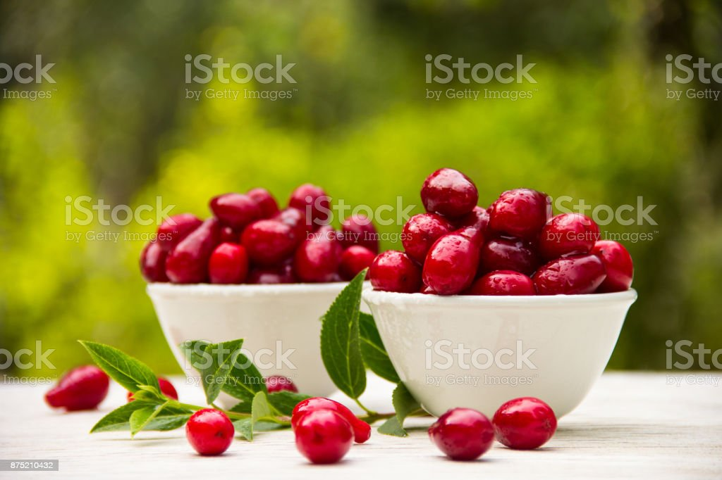 Red juicy berries in white cups on the table. Organic cornelian stock photo