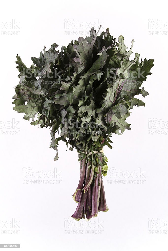 Red Kale royalty-free stock photo