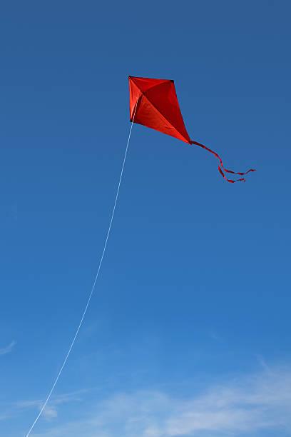 Red kite in the sky stock photo