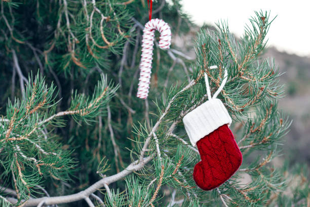 Red knitted Christmas stock hanging on tree outdoor with copy space on the left stock photo