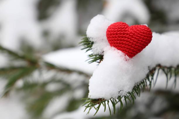 rotes gestricktes herz im schnee auf den tannenzweigen, winterwetter. konzept für die romantische liebe, schneefall, weihnachtsstimmung, valentinstag-karte - weihnachtsspende stock-fotos und bilder