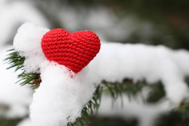 roten gestrickte herzen auf tannenzweigen bedeckt mit schnee - weihnachtsspende stock-fotos und bilder