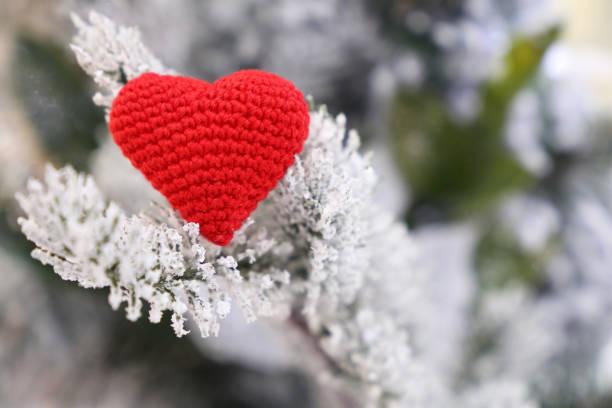 rotes strickherz auf schneebedeckten tannenzweigen - weihnachtsspende stock-fotos und bilder
