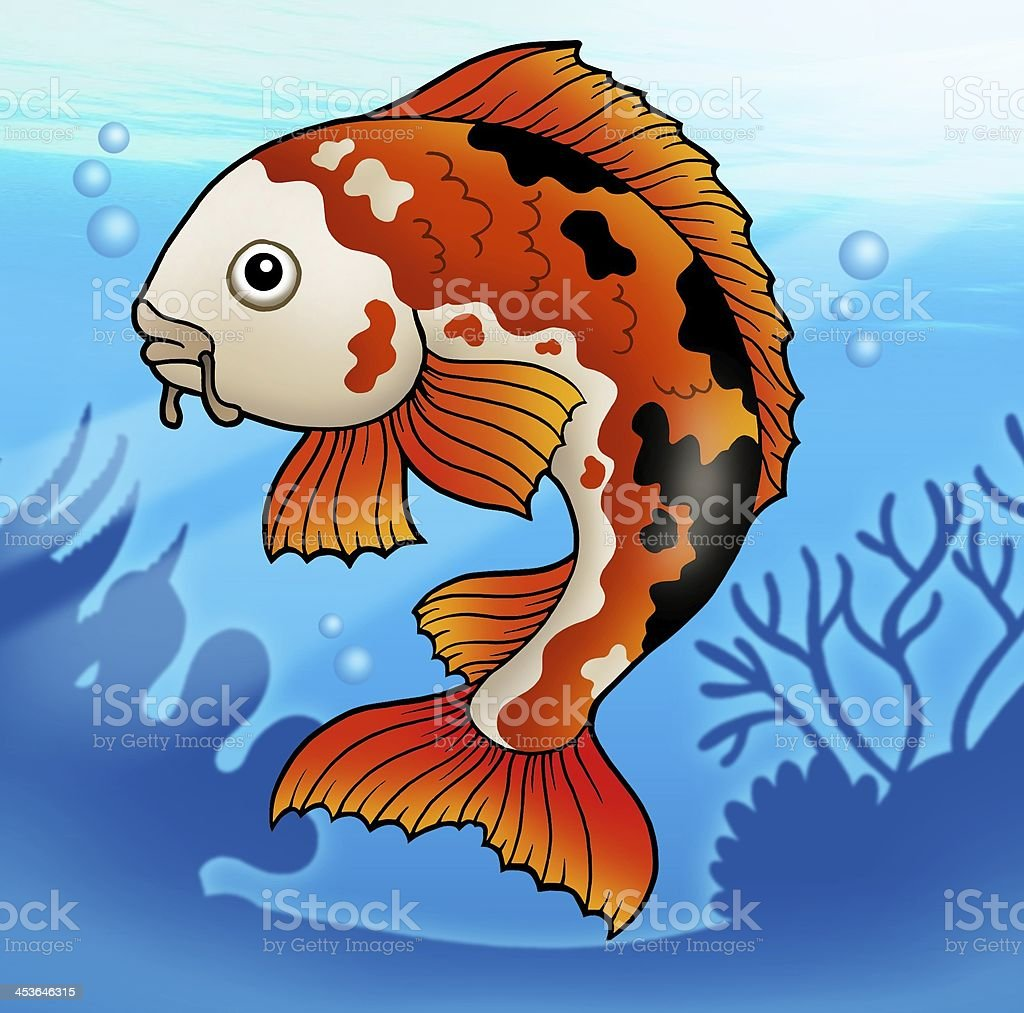 Red koi fish in water royalty-free stock photo