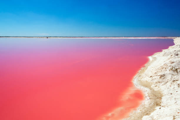 Red Lagoon for Salt Production stock photo