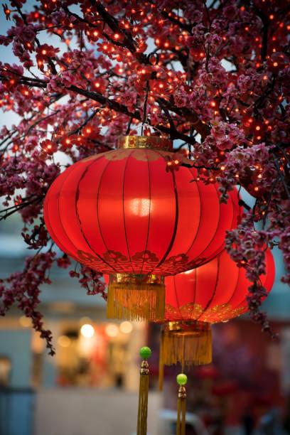 красные фонари висит высокий - chinese new year стоковые фото и изображения