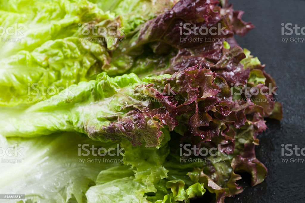 Red Leaf Lettuce Closeup Detail stock photo