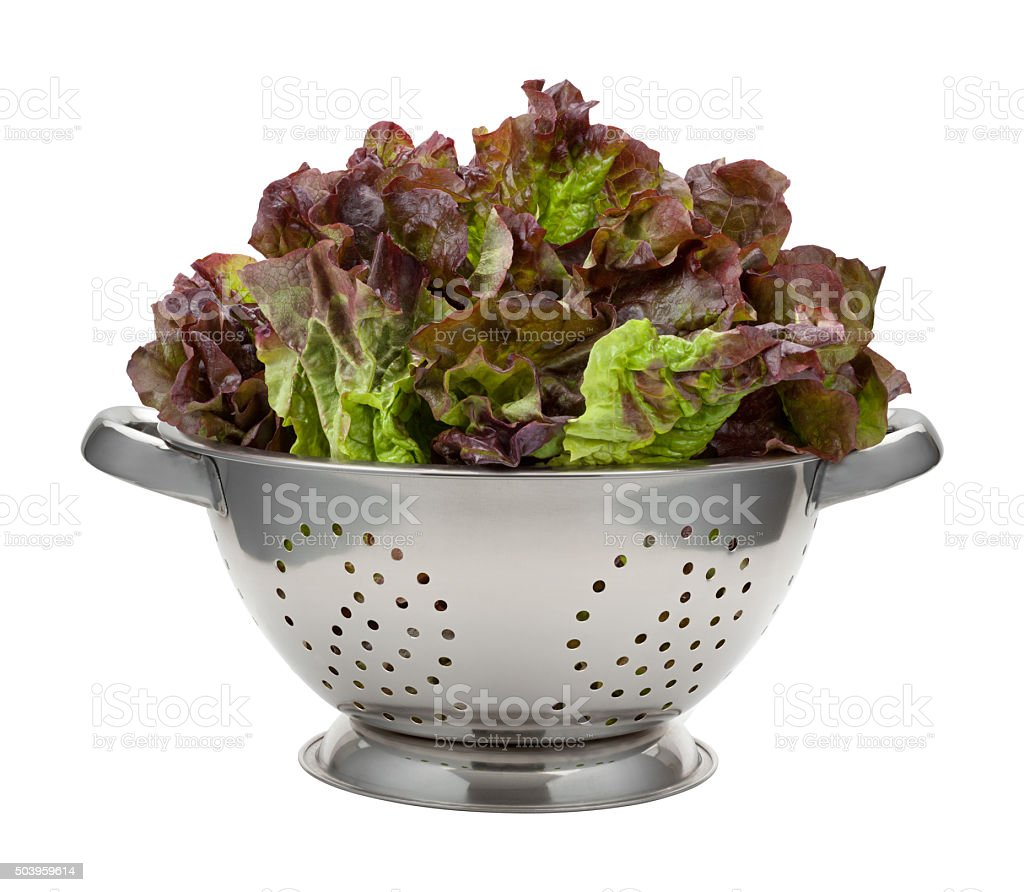 Red Leaf Lettuce in a Stainless Steel Colander stock photo