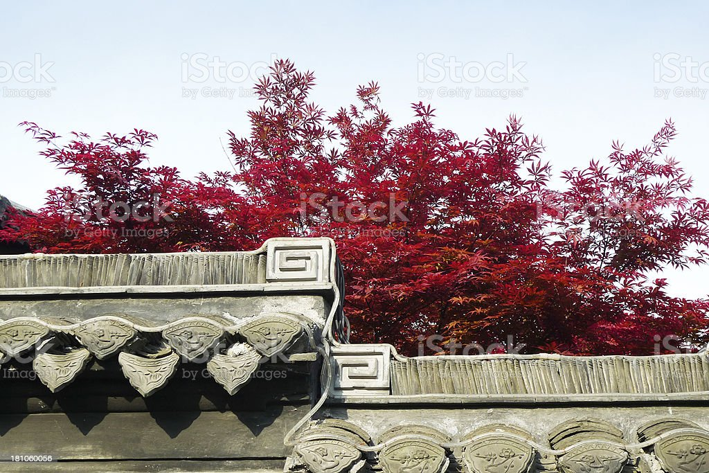 Red Leaves on Chinese Building royalty-free stock photo