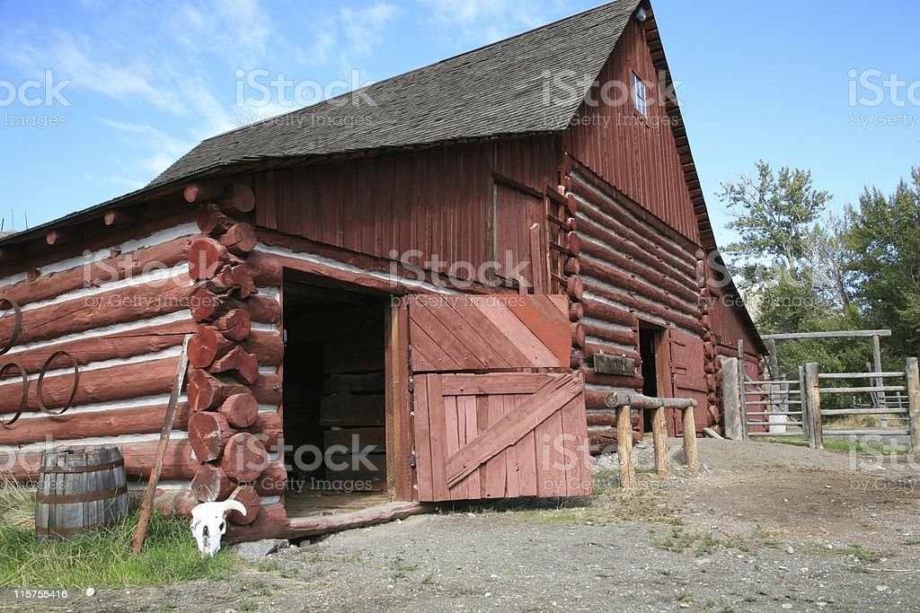 Red log barn with white cow skull. stock photo