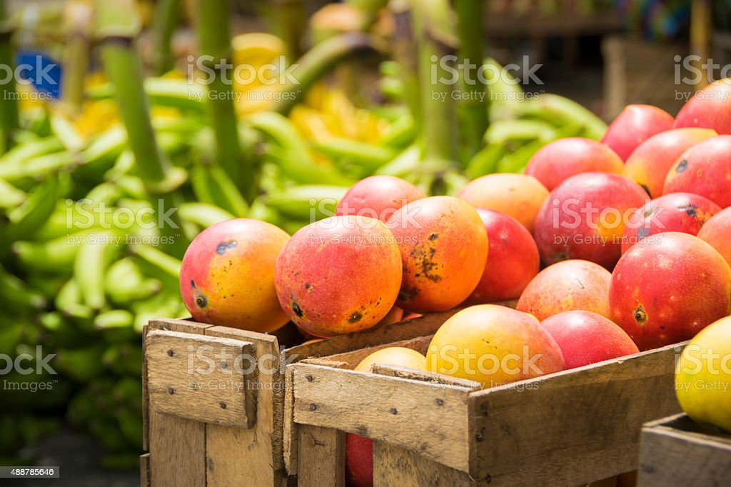 Red Mango fruit in a wooden box stock photo