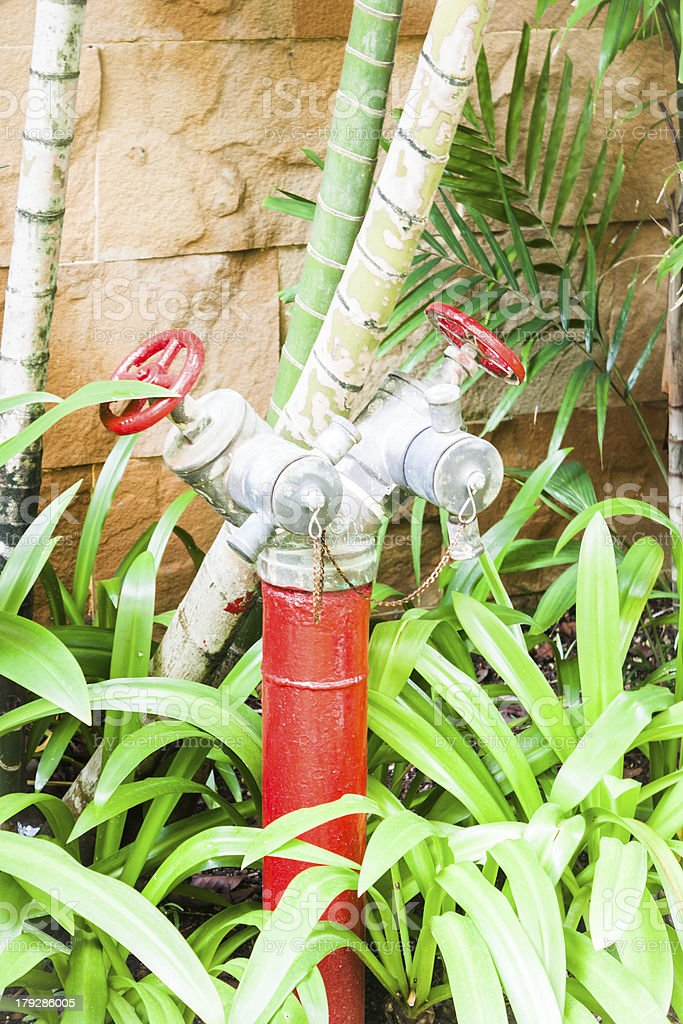 Red metallic fire hydrant in green garden royalty-free stock photo