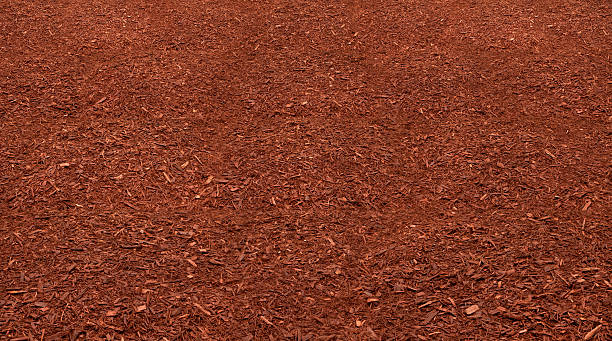 Red Mulch Bed stock photo