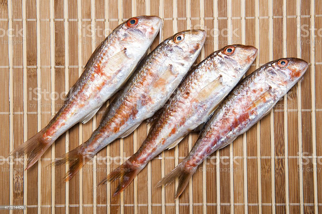 Red Mullet royalty-free stock photo