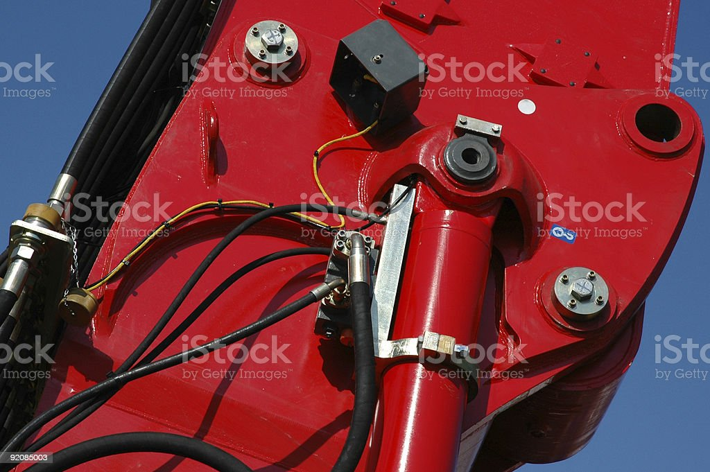 Red Muscle royalty-free stock photo
