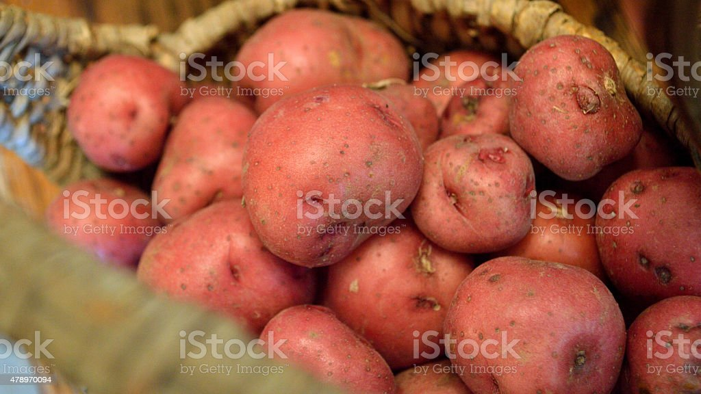 Red new potato closeup in brown basket, widescreen stock photo