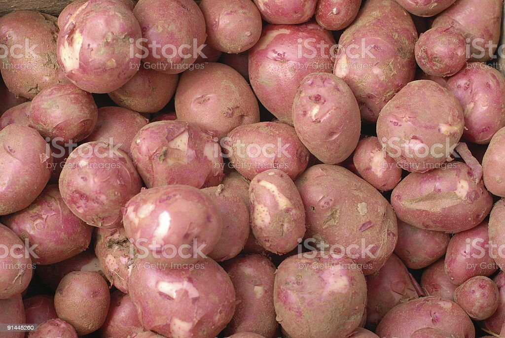 Red Norland Potatoes at a Farmer's Market royalty-free stock photo