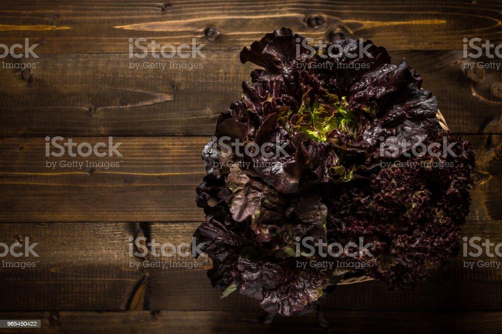 Laitue en feuilles chêne rouge sur un fond en bois foncé avec espace copie - Photo de Agriculture libre de droits