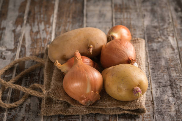 red onion and potato on the wood background - alliacee foto e immagini stock