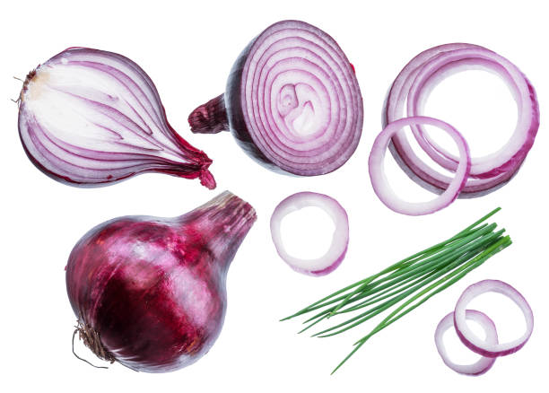 Red onion bulbs, cross sections of onion and spring onions. Red onion bulbs, cross sections of onion and spring onions on white background. spanish onion stock pictures, royalty-free photos & images