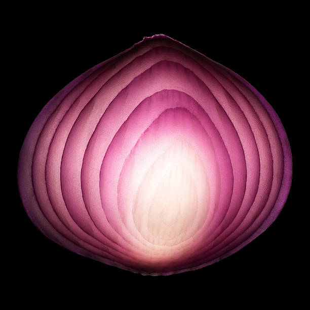 Red onion cross-section stock photo