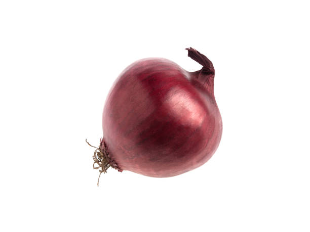 Red onion isolated on white background Red onion isolated on white background red onions stock pictures, royalty-free photos & images