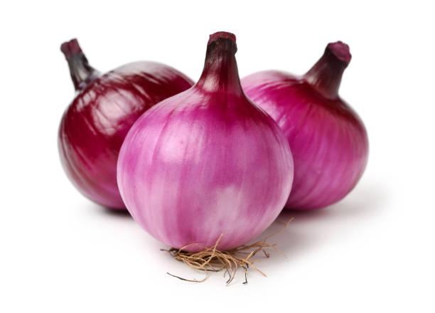 Red onion – zdjęcie