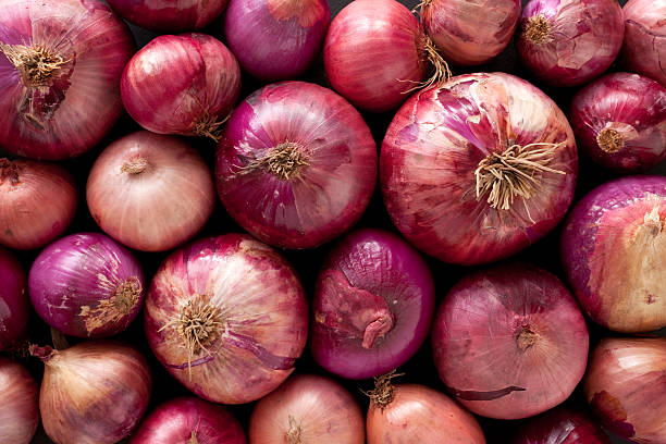 Red onions background Top view of regular red onions spanish onion stock pictures, royalty-free photos & images