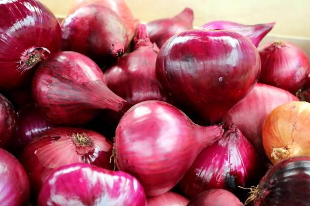 Roten Zwiebeln auf einem Markt in Südeuropa, Detail, Nahaufnahme – Foto