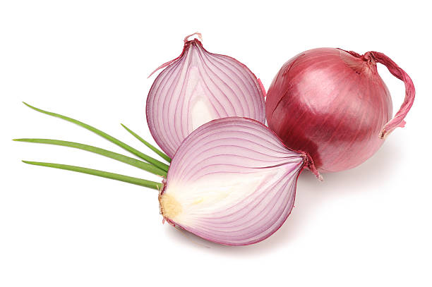 Red or Purple Organic Onions Isolated Fleshy red or purple onions profiled and whole with onion sprigs. Isolated. red onions stock pictures, royalty-free photos & images