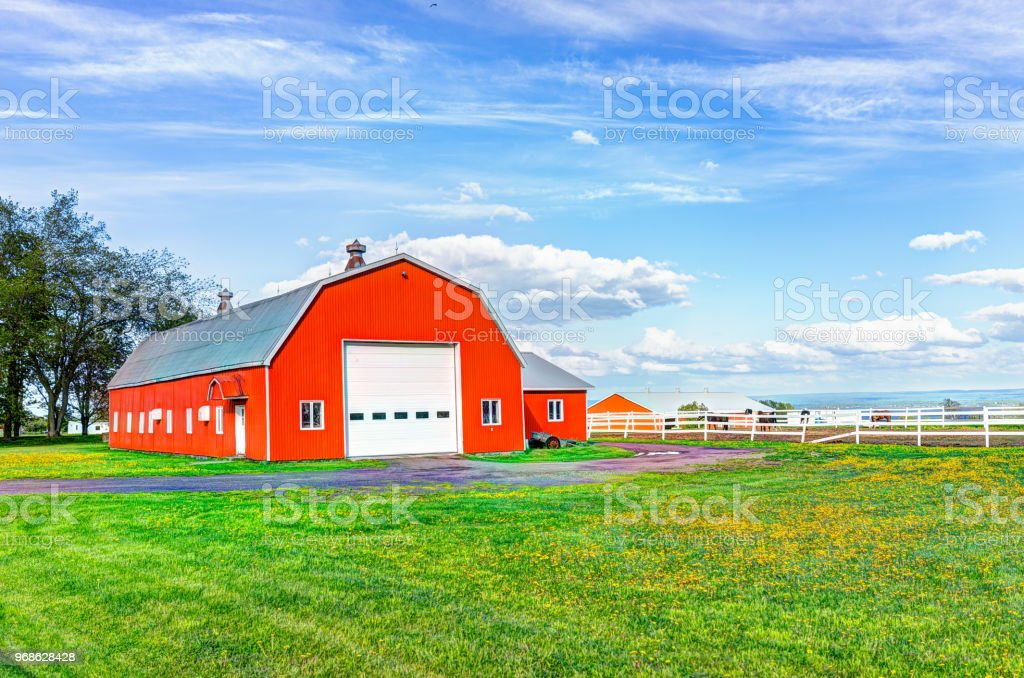 Red orange painted barn shed with white doors in summer landscape field in countryside stock photo