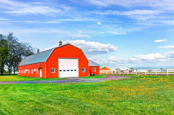 rot-orange lackiert scheune schuppen mit weißen türen im sommer landschaft feld in landschaft - schuppen türen stock-fotos und bilder