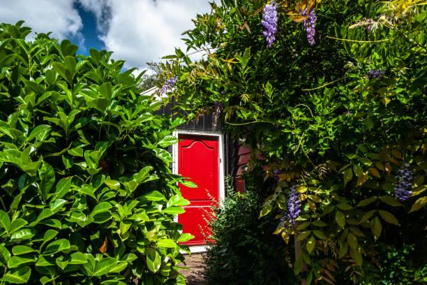 rode gelakte deur in een groene tuin van een oud-hollandse stad met traditionele houten vintage houten huizen - beemster stockfoto's en -beelden