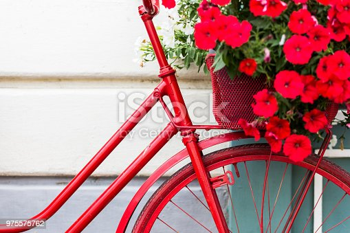 Color image depicting a pedal bicycle painted a vibrant shade of red. The bike is leaning against a wall. The bright color of the bike contrasts nicely with the hue of the wall. There is a display of brightly colored fresh flowers in the basket at the front  and rear of the bicycle. Lots of room for copy space.