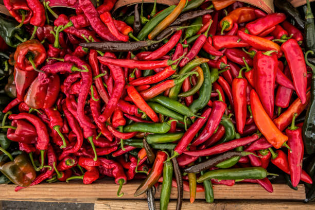 red pepper - chilli stock photos and pictures