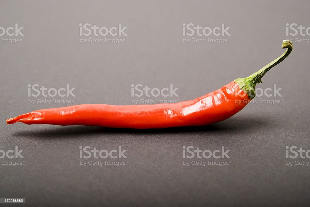 Red Pepper With Grey Background royalty-free stock photo