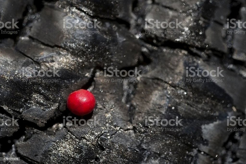 Red peppercorn royalty-free stock photo