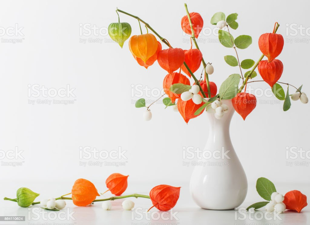 red physalis on wooden table royalty-free stock photo