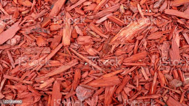Photo of Red pine mulch_01