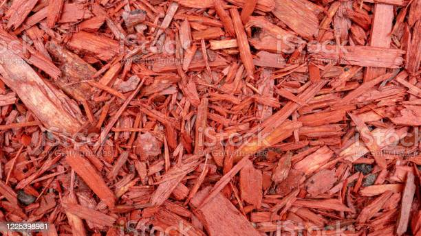 Photo of Red pine mulch_02
