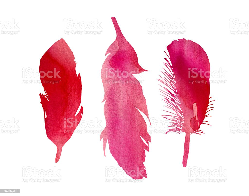 Red Pink Fuchsia Watercolor Feathers Illustration stock photo