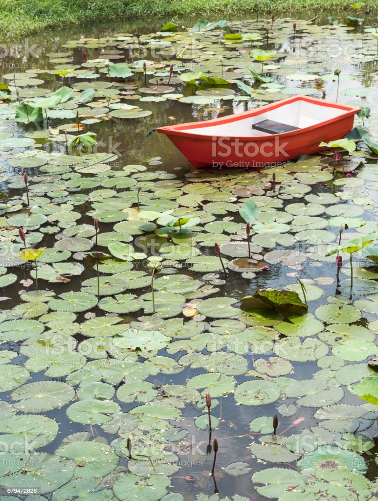 Red plastic boat in the small pond. 免版稅 stock photo